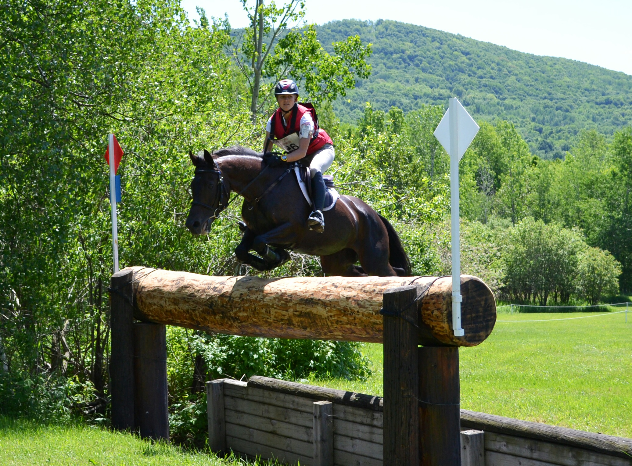 Cross-Country Competition at CCI Three-Star Equestrian ...