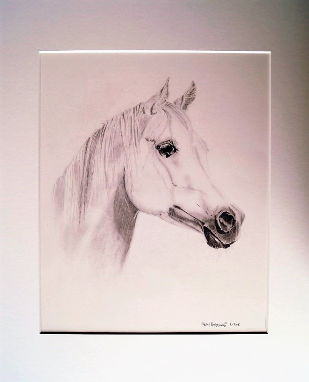 merel-burggraaf-art-paard-equine-horse-painting-drawing-kunst-portret1 (2)