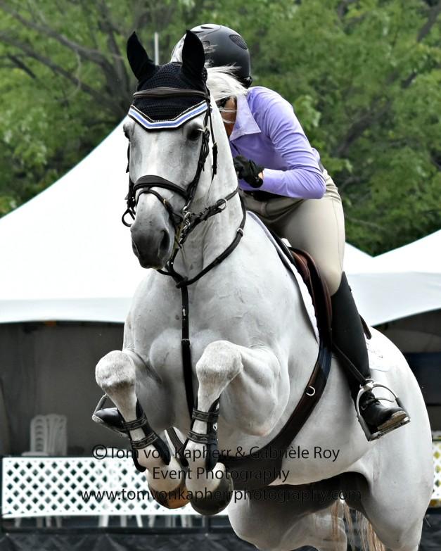 Horse & Helmet